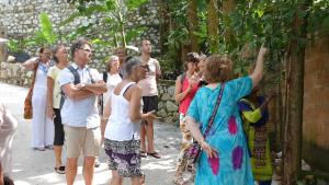 Retreat på ett ashram i Indien